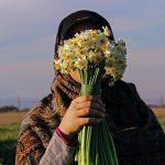 عکس گل نرگس در برف در دست دختر زیبا با کیفیت برای پروفایل